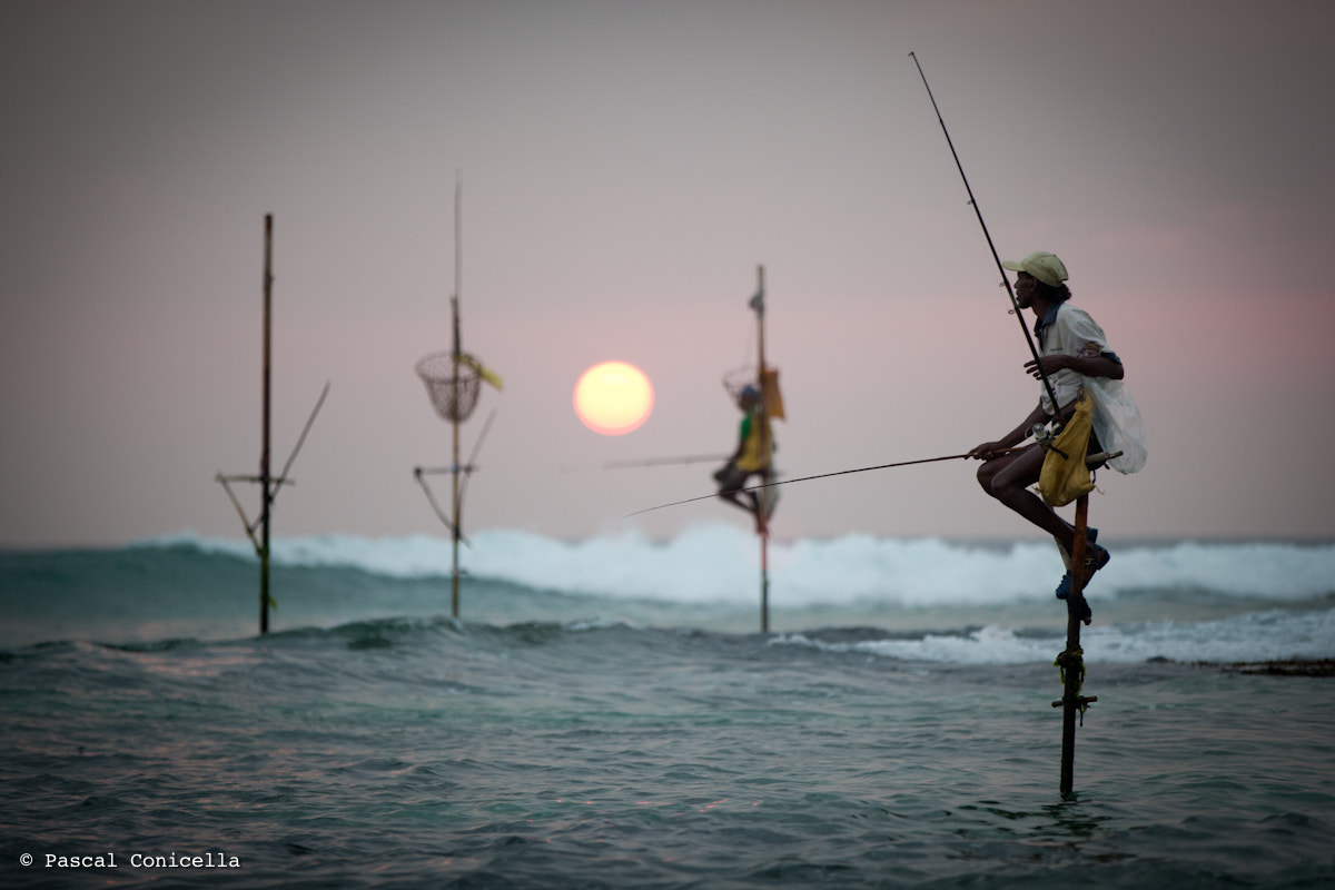 Photograph Fisherman in Sri Lanka by Pascal Conicella on 500px