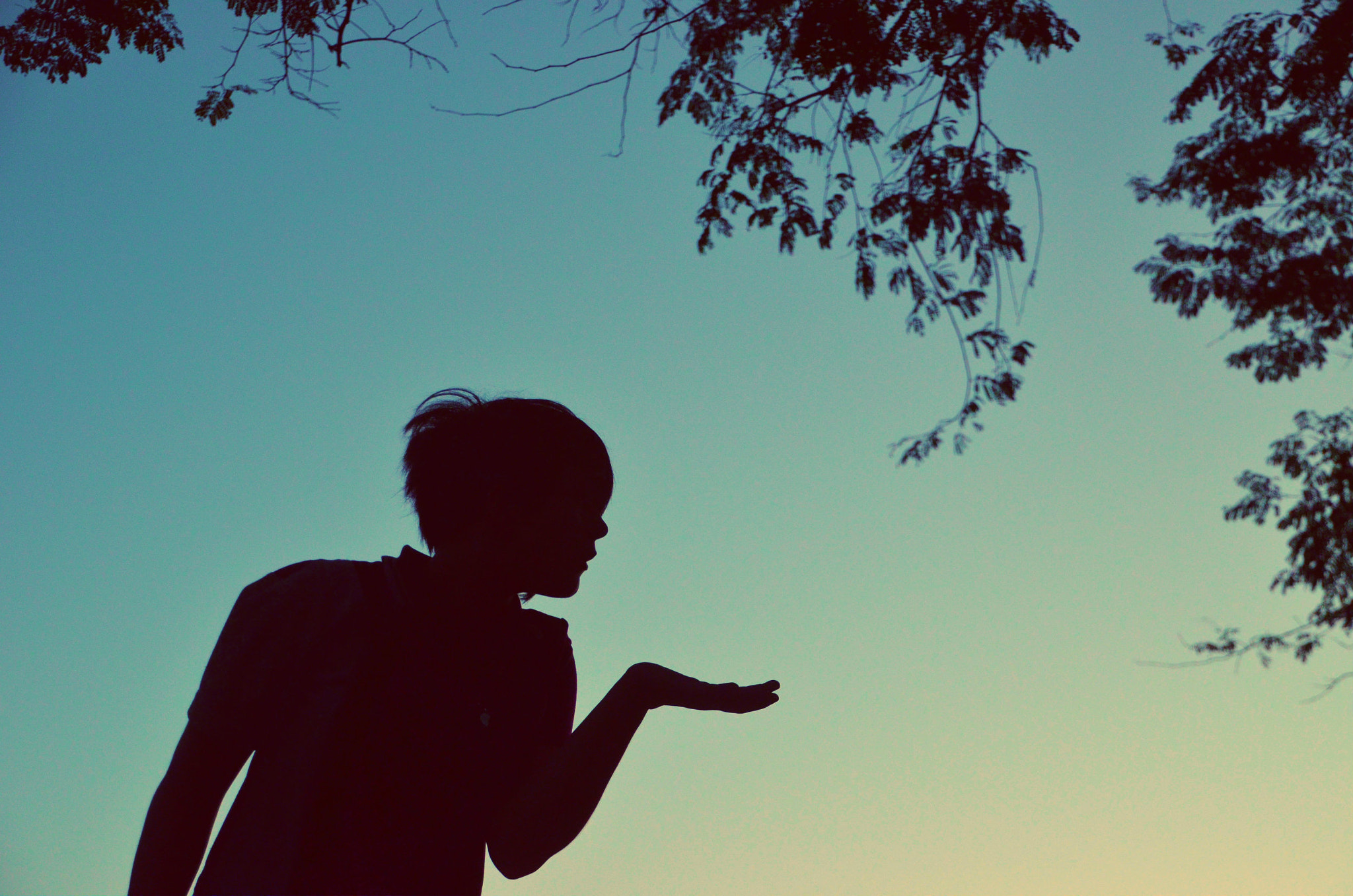 Photograph Silhouette by Elora Ghea on 500px