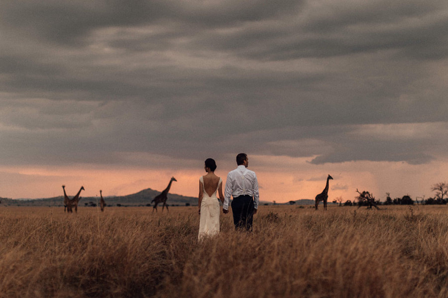 Wedding photography - The Plains by Melli & Shayne  on 500px.com