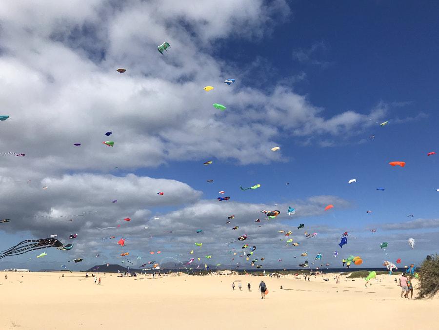 kite festival corralejo by Viktoria-and-Veniamin on 500px.com