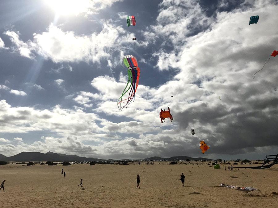 kite festival corralejo 2018 by Viktoria-and-Veniamin on 500px.com