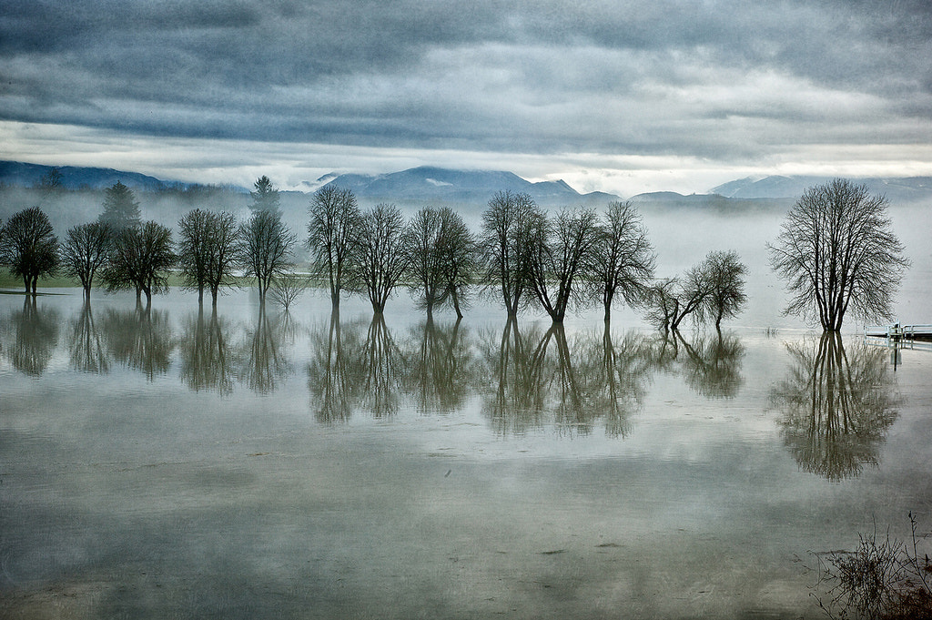 Photograph After the Rain by Steven Dempsey on 500px