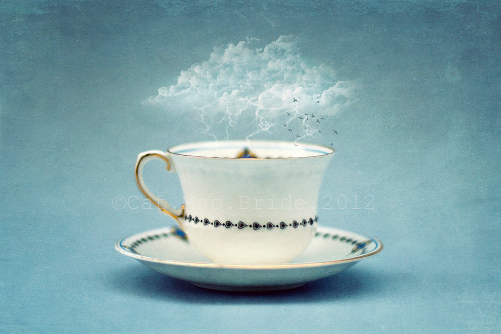 Photograph storm in a teacup by Catherine MacBride on 500px