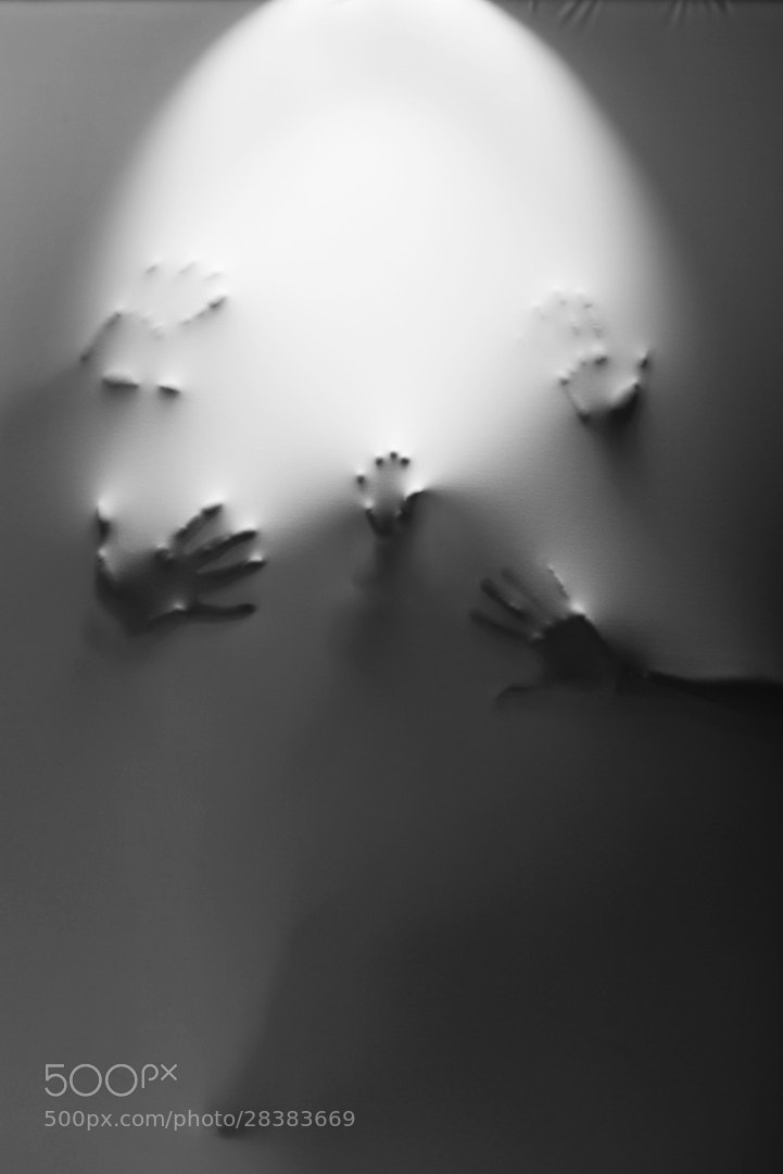 Photograph 5 by Branko Korelc on 500px
