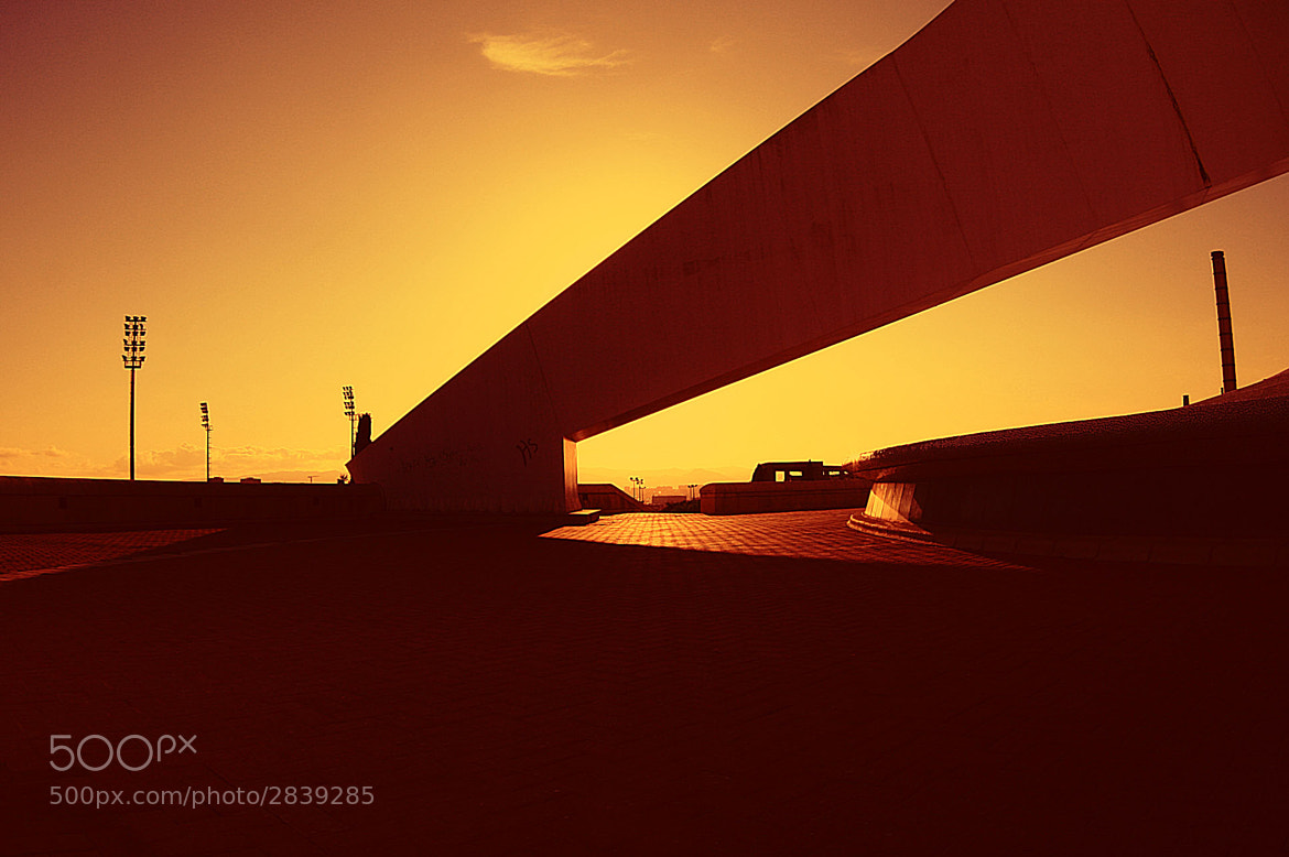 Photograph heat by coleopter ! on 500px