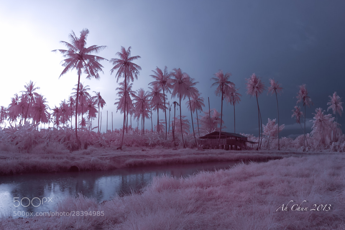 Photograph Sunset @ Sg Burung - IR by Ah Chun on 500px