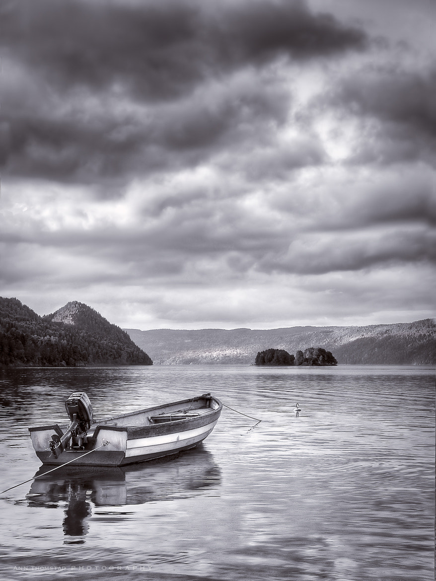 Photograph Waiting by Ann Thomstad on 500px