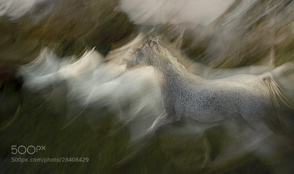 Photograph in motion by Milan Malovrh on 500px