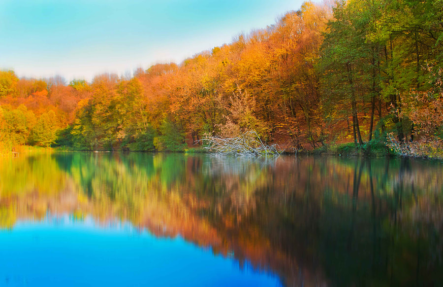 Autumn lake by Inna Petrova on 500px.com