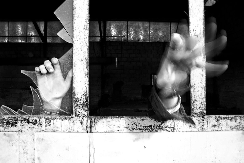 Photograph Hands by Samuele Trobbiani on 500px
