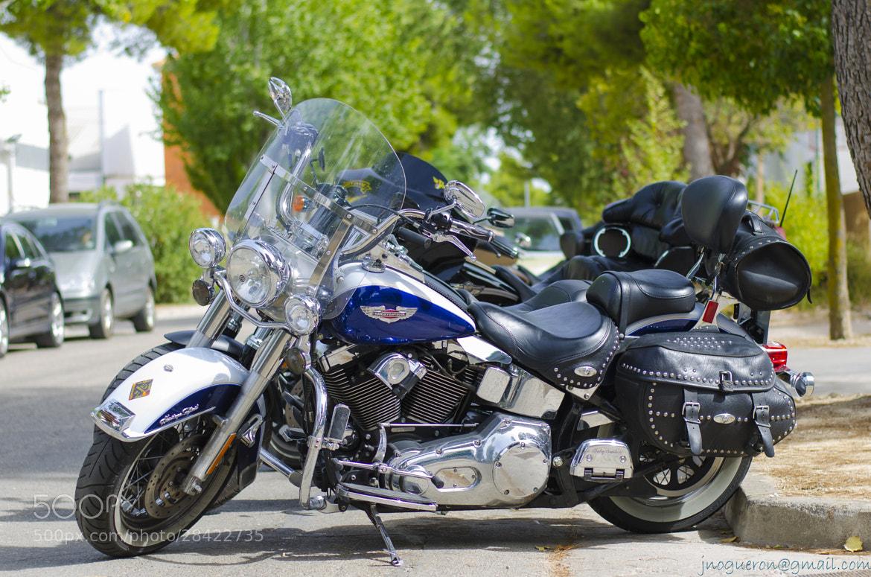 Photograph Harley Davidson 2 by José Juan Noguerón on 500px