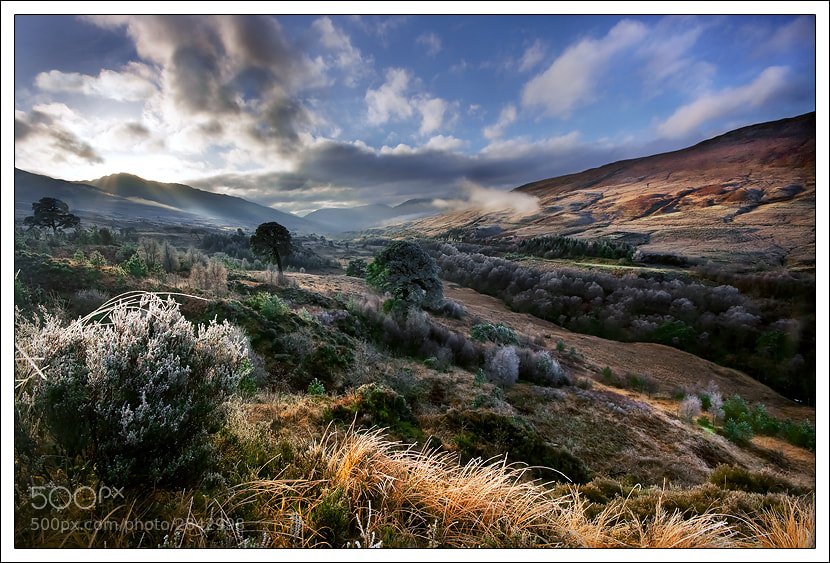 Photograph Scottish Highlands by Alex Scott on 500px