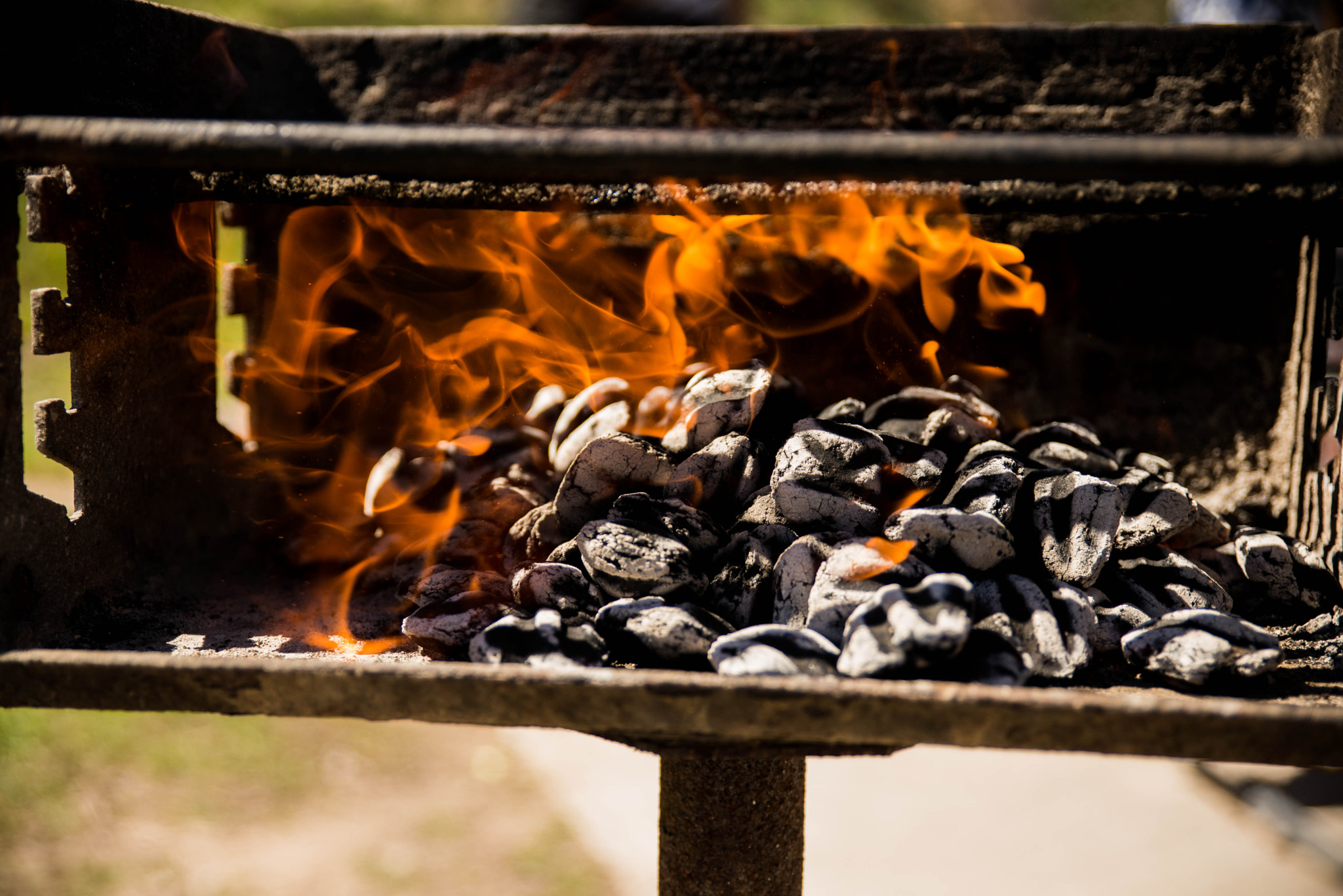 Photograph Barbeque by Deepak Dhamuria on 500px