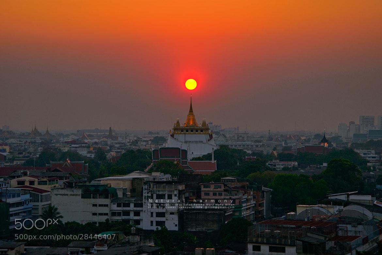 Photograph Natural harmony by Jirawas Teekayu on 500px