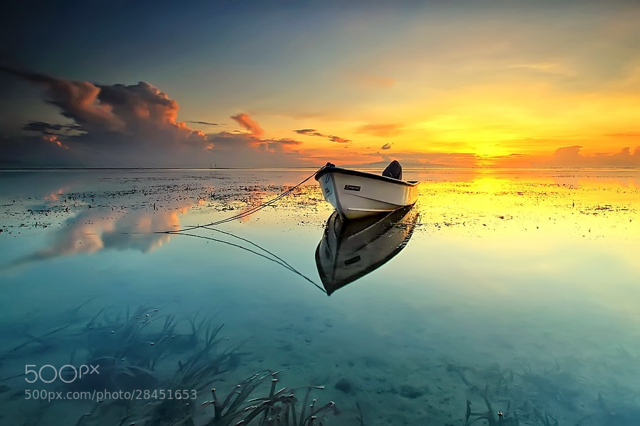 Photograph Silence Morning by Agoes Antara on 500px