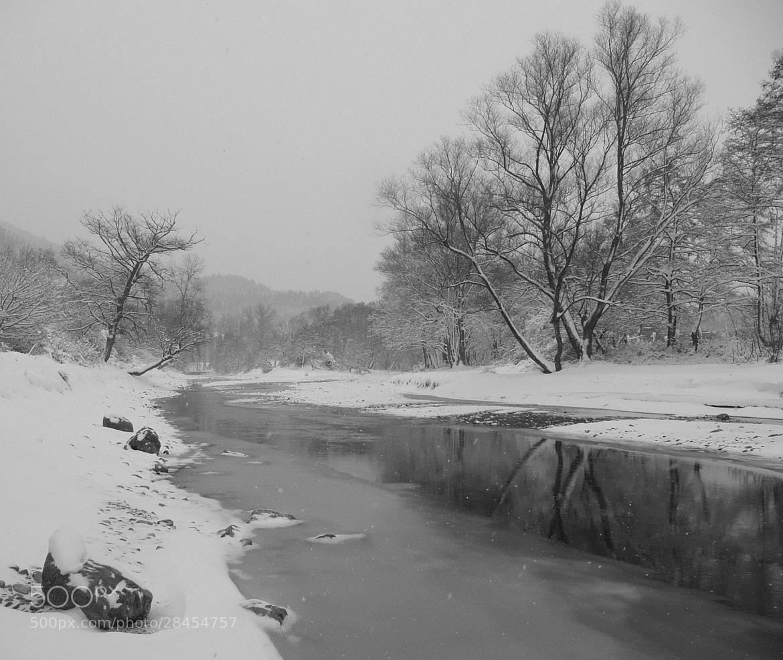 Photograph Winter by Martin Zeinelov on 500px