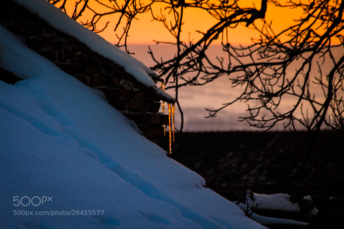 Photograph orangE.iciclE by Manuel Stolle on 500px
