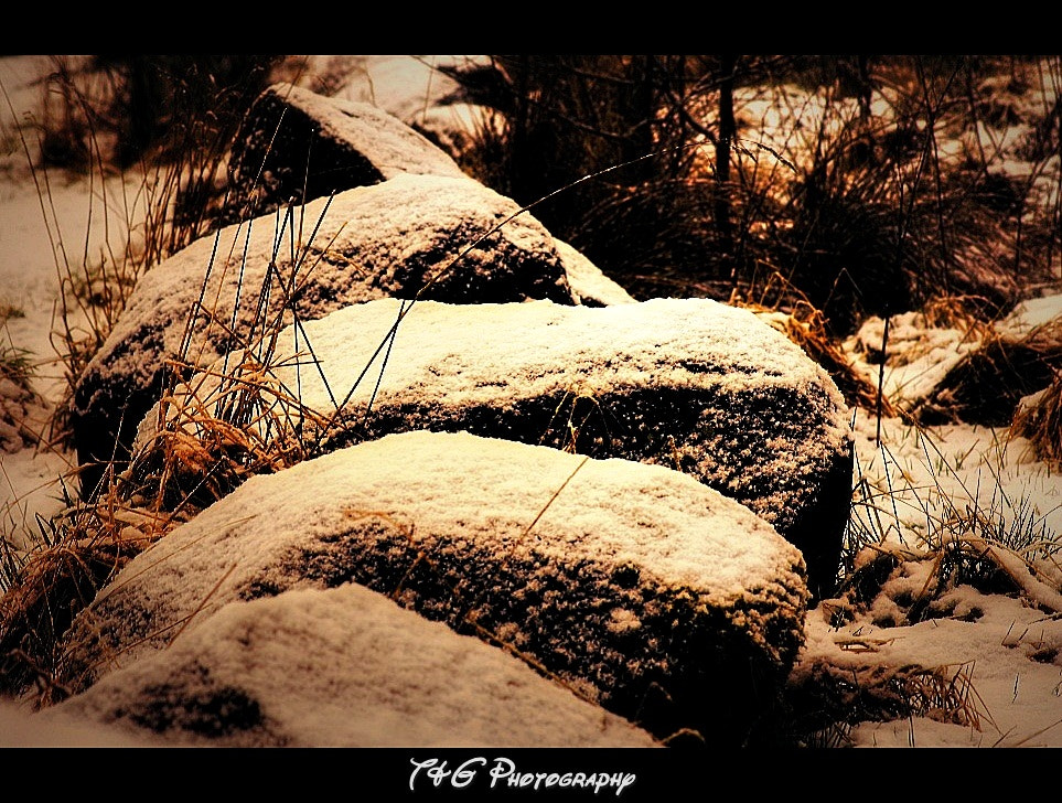 Photograph Rock & Snow colour by T&G Photography  on 500px