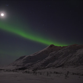 Northern Light & Moon