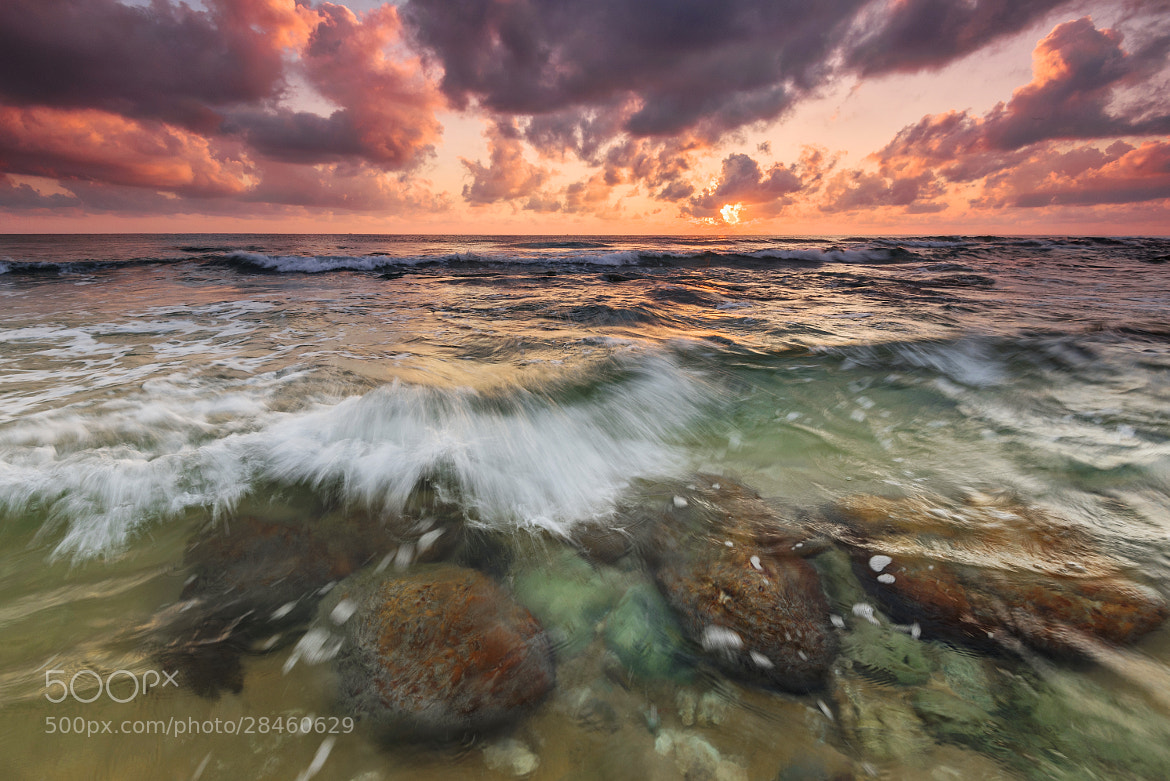 Photograph submerged by Mk Azmi on 500px