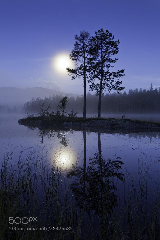 Photograph Moonlight by Bjørn-Roar Valvik on 500px