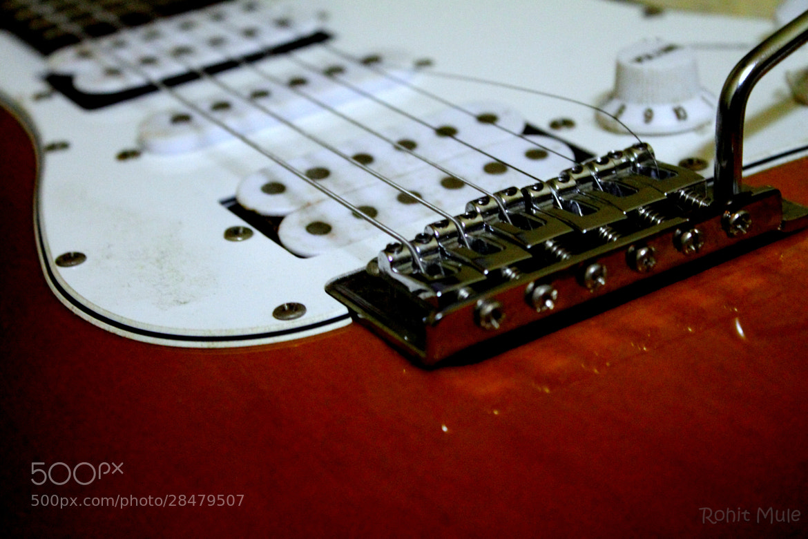 Photograph Guitar by Rohit Mule on 500px