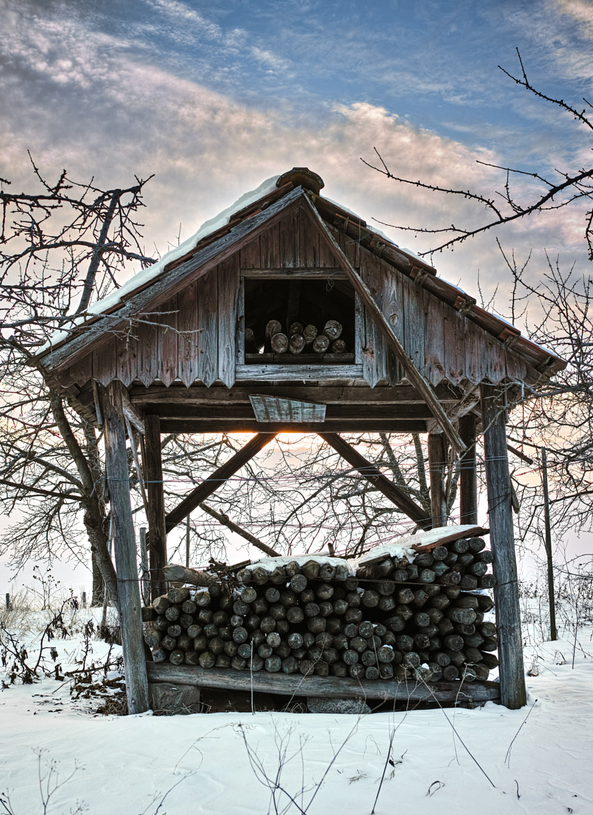 Photograph Wood pile shelter by ElSauza on 500px