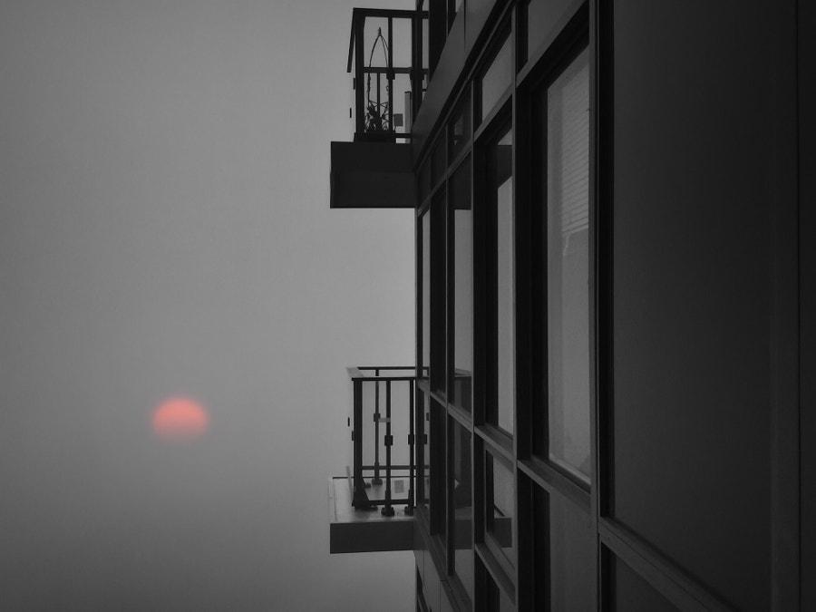 The fog by B N on 500px.com