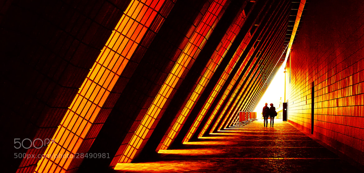 Photograph 香港街頭 by stephen ng on 500px