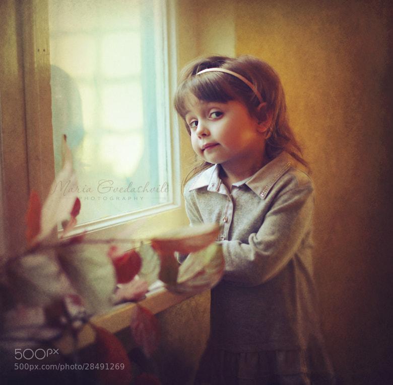 Photograph Autumn by Maria Gvedashvili on 500px