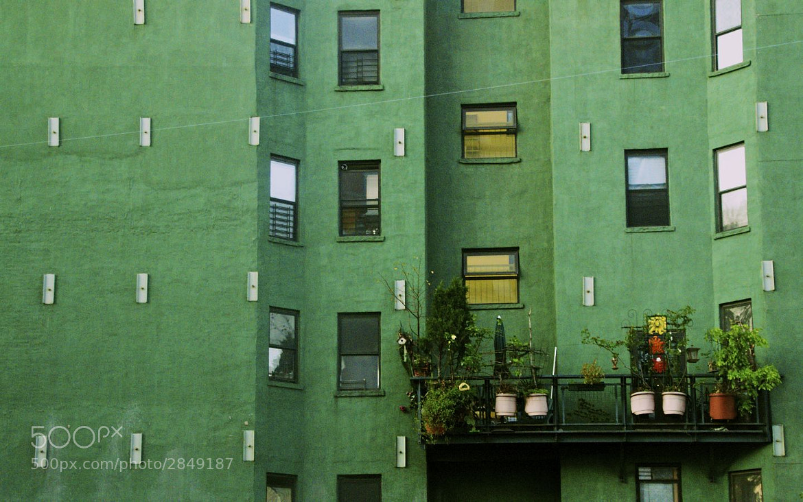 Photograph Nolita Green by Eric Smith on 500px