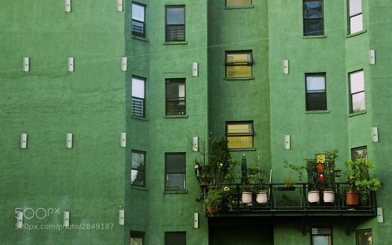 Photograph Nolita Green by Eric Smith on 500px