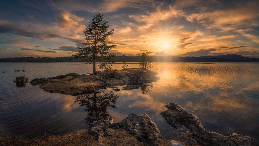 Spring Light by Ole Henrik Skjelstad on 500px.com