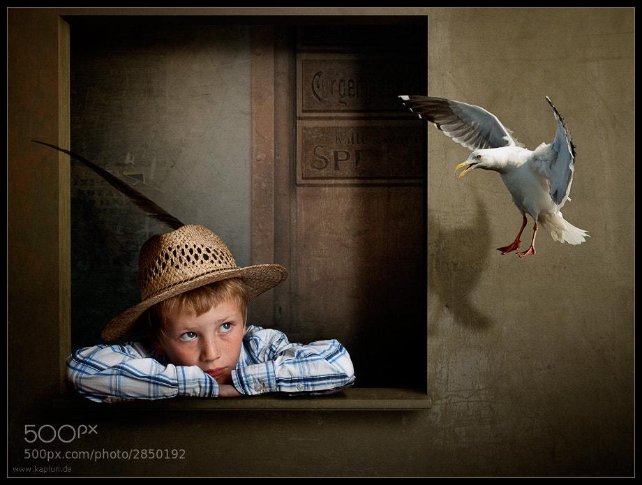 Photograph Der Junge und die Möwe by Pavel Kaplun on 500px