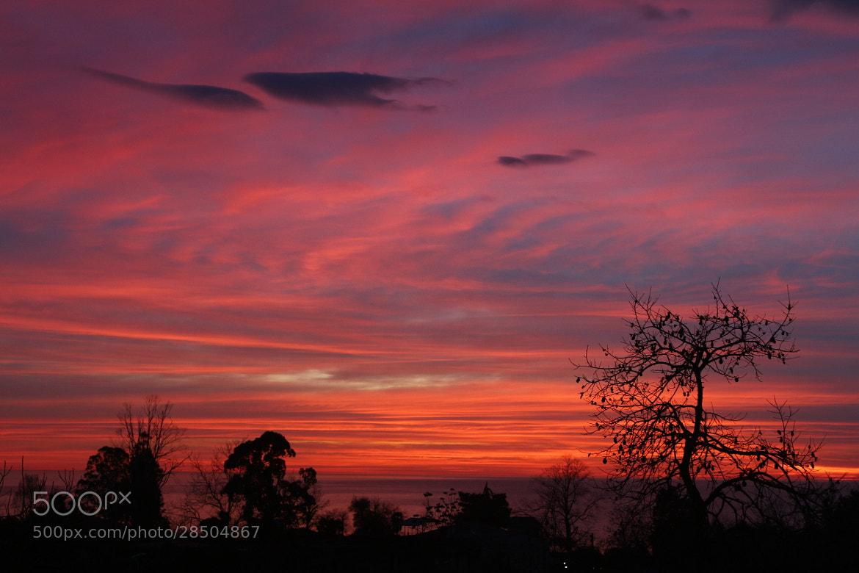 Photograph sunset by lili Kogonia on 500px