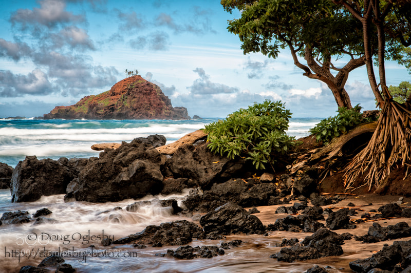 Photograph The Beach by Doug Oglesby on 500px