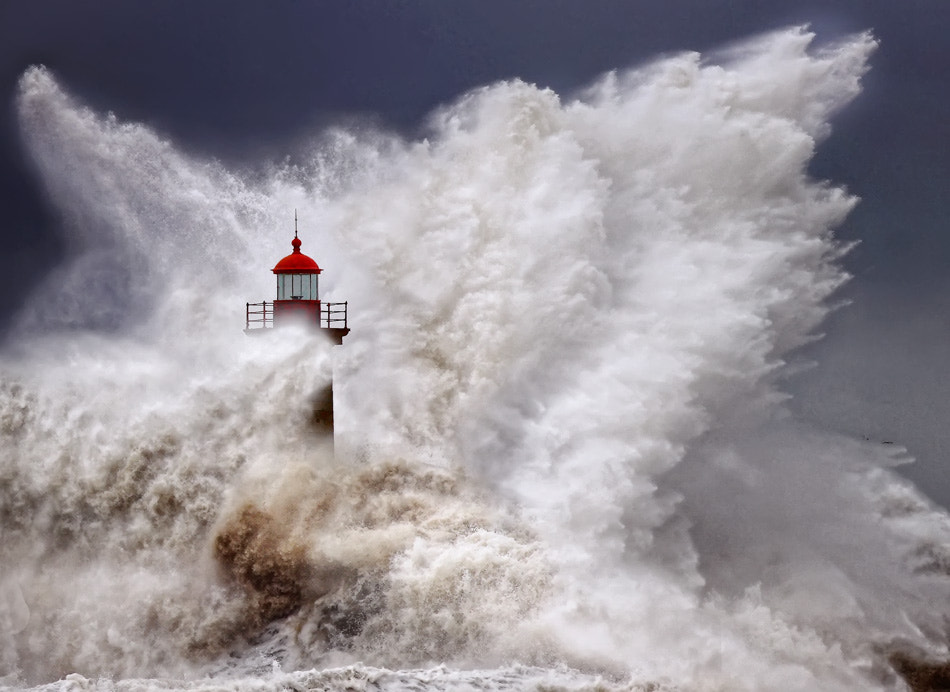 Photograph Born in Chaos - colour by Veselin Malinov on 500px