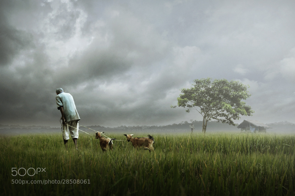 Photograph Balik Rumah by chegu diman on 500px