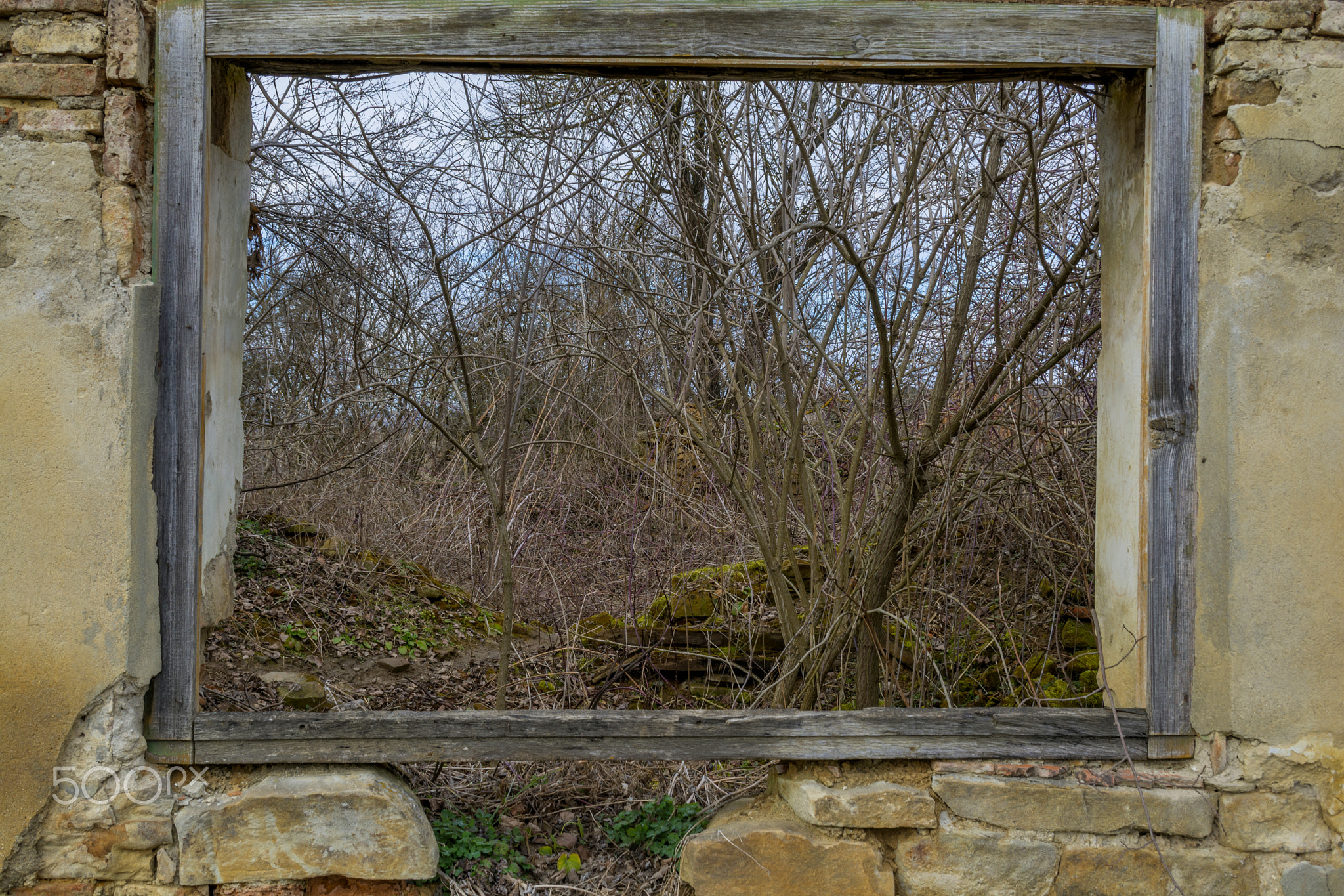 View from a wood window of an old ruin house