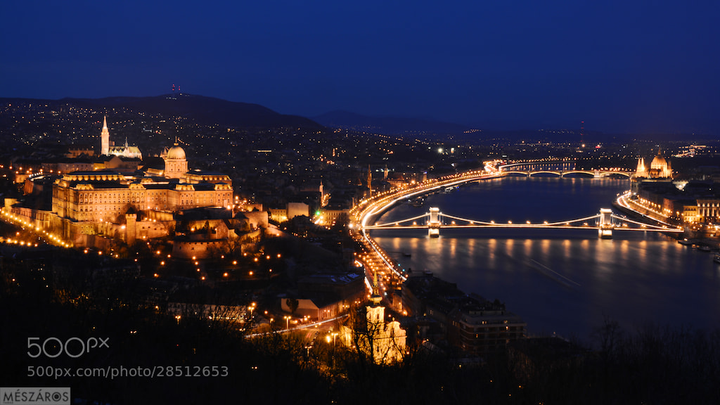 Photograph Blue Hour in Budapest by Tamás Mészáros on 500px