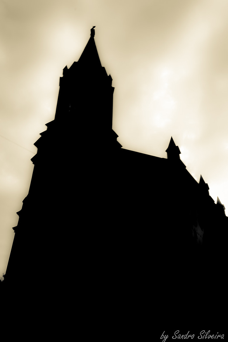 Photograph Silhouete by Sandro Silveira on 500px