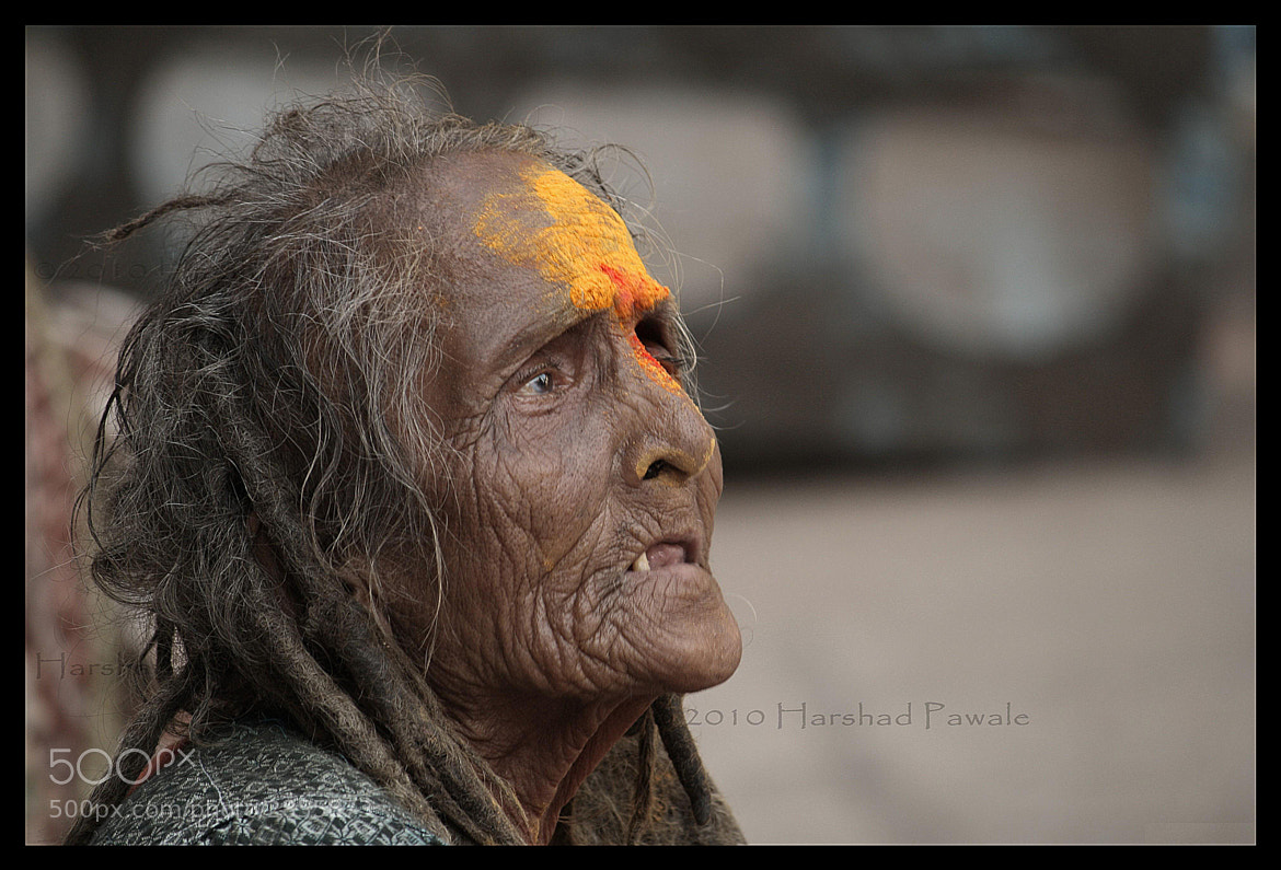 Photograph The Blessed one.. by Harshad Pawale on 500px