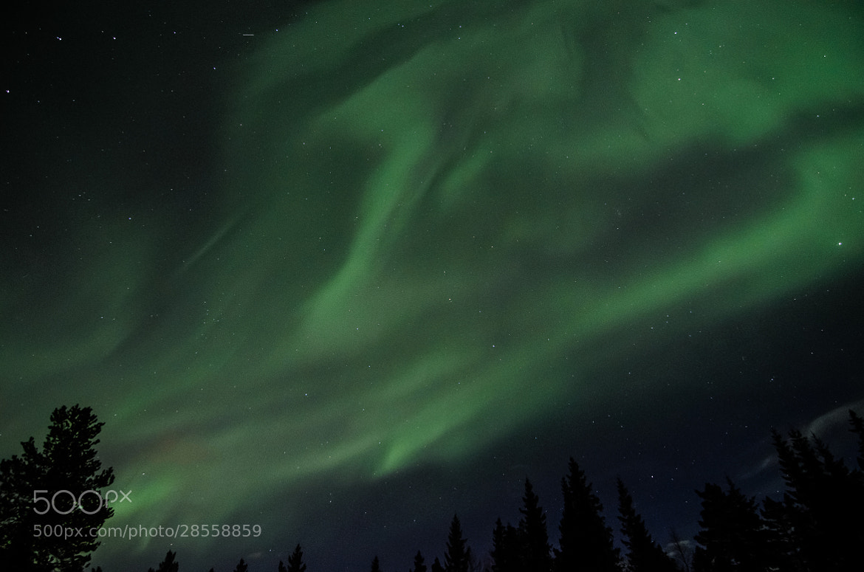 Photograph Aurora by Kolbein Svensson on 500px