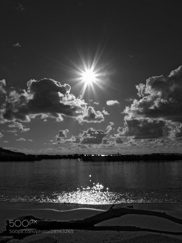 Photograph Summer sunshine by Haru Digital phot on 500px