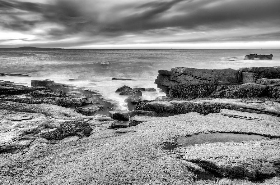 Rocks at Acadia