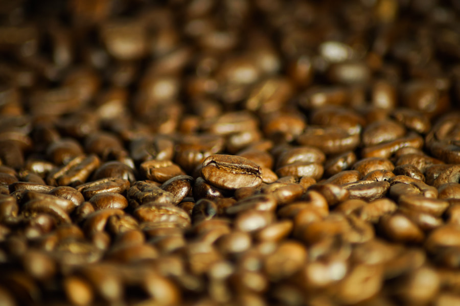 Coffee beans by Klaus Vartzbed on 500px.com
