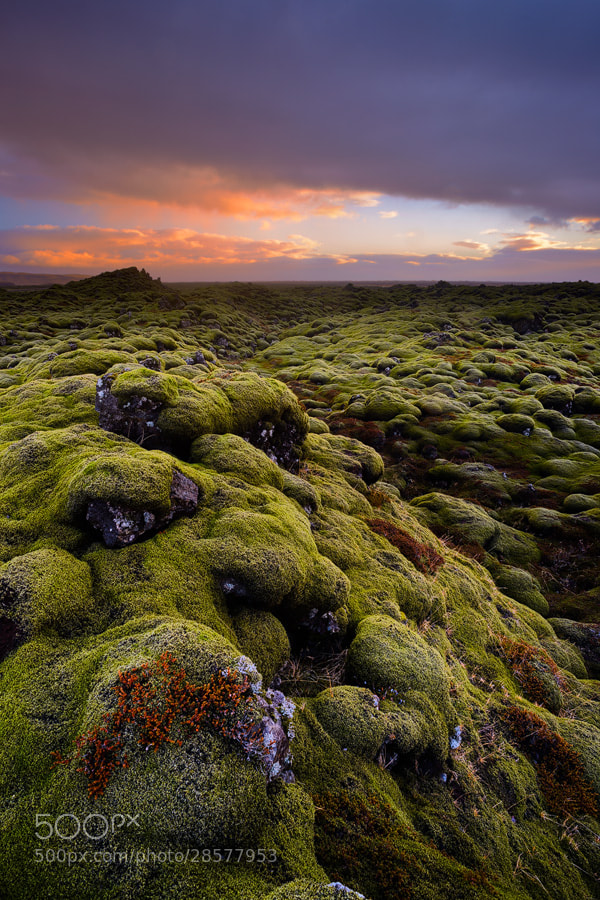Photograph lava field by Martin Amm on 500px