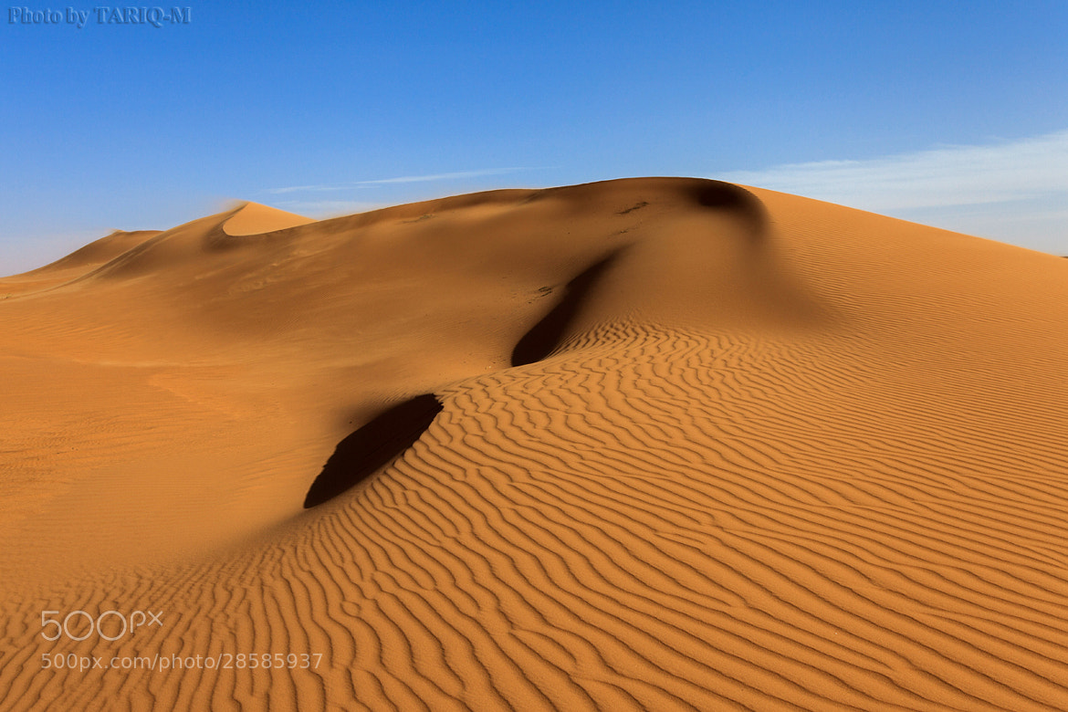 Photograph Blowing Sand by Tariq Almutlaq on 500px