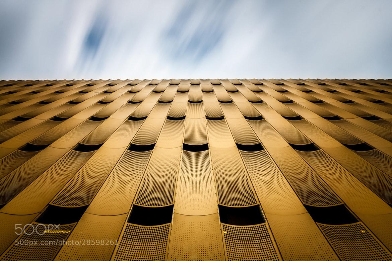 Photograph Golden perspective by Raymond van der Hoogt on 500px