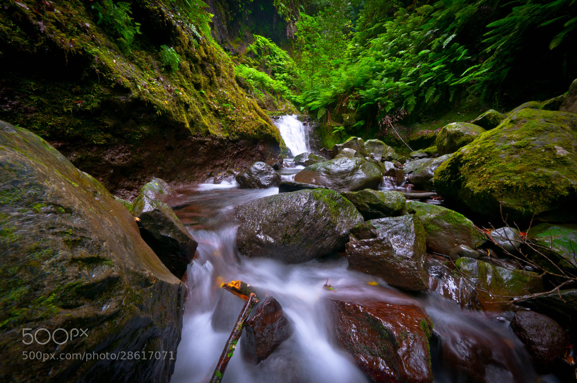 """Photograph Waterfall at then levada """"Ribeiro Bonito"""" by Anders Larsson on 500px"""